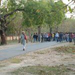 IIT BHU Campus